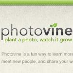 googleの写真SNS『photovine』で遊んでみました!