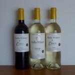 勝沼ワイナリー巡り2013『購入ワイン14銘柄』これが我が家のワインリストだ!