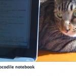 『crocodile notebook』について